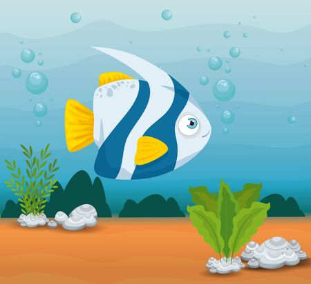ornamental fish animal marine in ocean, sea world dweller, cute underwater creature,habitat marine vector illustration design