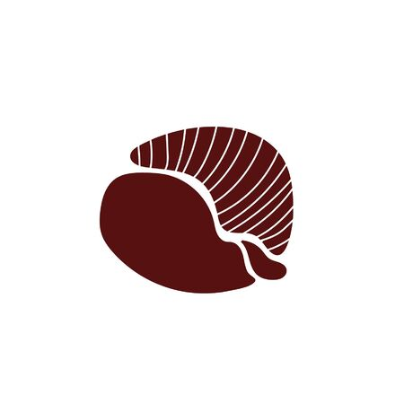 shell sea life animal isolated icon vector illustration design
