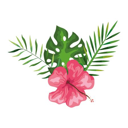 hibiscus beautiful pink color with branches and leaves, tropical nature, spring summer botanical vector illustration design