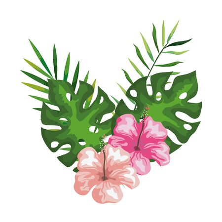 hibiscus flowers with branches and leaves, tropical nature, spring summer botanical vector illustration design