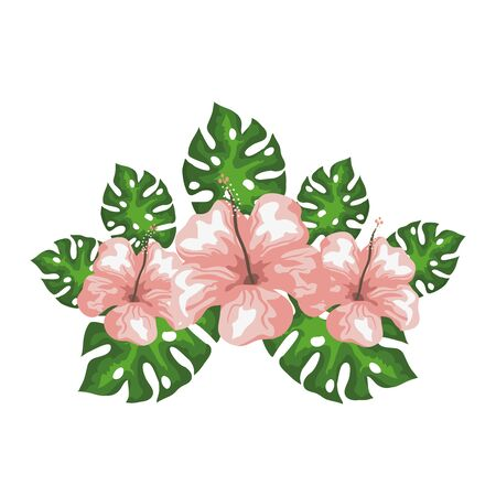 hibiscus flowers with exotic leaves, tropical nature, spring summer botanical vector illustration design Vectores