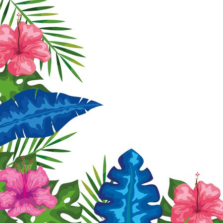 decoration of hibiscus flowers with branches and leaves, tropical nature, spring summer botanical vector illustration design Vectores