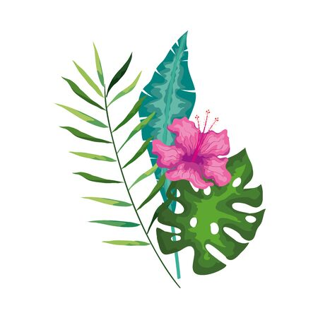 hibiscus beautiful pink color with branch and leaves, tropical nature, spring summer botanical vector illustration design