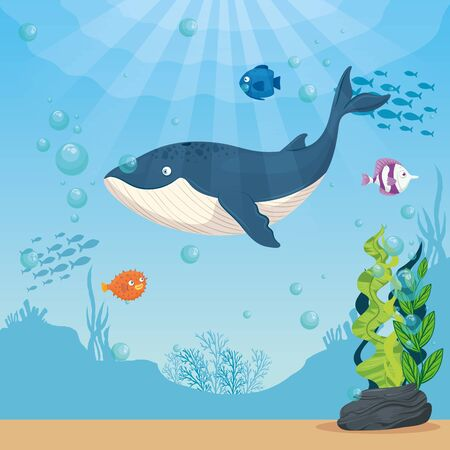 blue whale with fishes and wild marine animals in ocean, sea world dwellers, cute underwater creatures,habitat marine concept vector illustration design 向量圖像