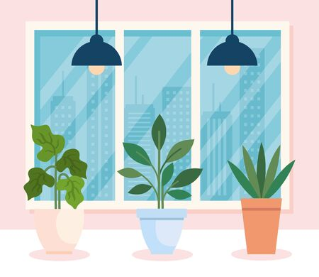 collection, house pot plants in house indoor vector illustration design