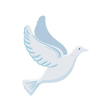 white dove flying on white background vector illustration design