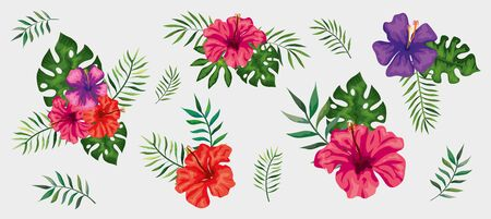 set of flowers with branches and leaves tropical vector illustration design