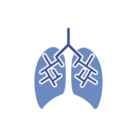 lungs human organ isolated icon vector illustration design