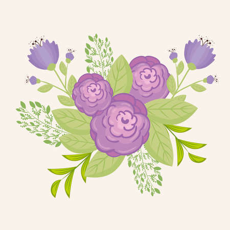 flowers purple color, branches with leaves, nature decoration vector illustration design