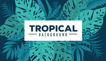tropical background with jungle plants, decoration with palm leaves vector illustration design
