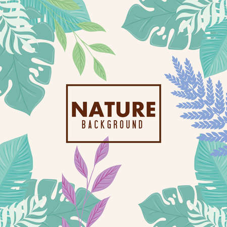 nature background, frame of tropical nature with branches and leaves of pastel color vector illustration design