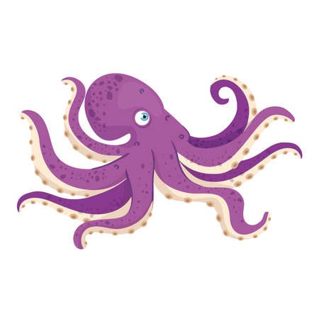 sea underwater life, octopus on white background vector illustration design