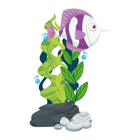 sea underwater life, cute fish with seaweed on white background vector illustration design Ilustrace