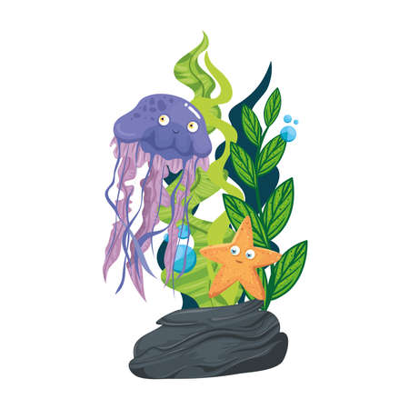 sea underwater life, jellyfish with starfish and seaweed on white background vector illustration design