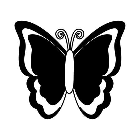 butterfly nature insect on white background illustration