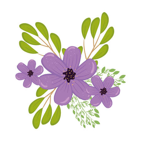 purple flowers with leaves design, natural floral nature plant ornament garden decoration and botany theme Vector illustration