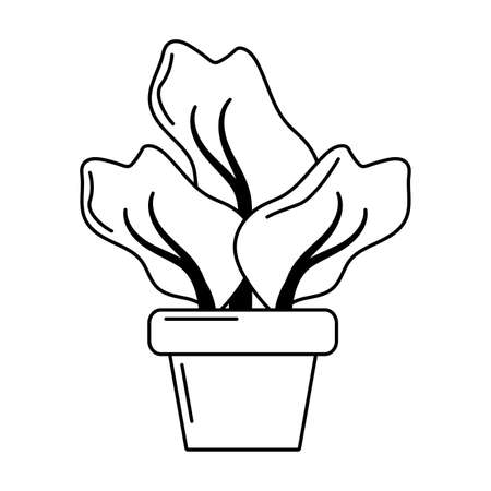 house plant pot isolated icon vector illustration design