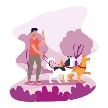 man walking dogs activity character vector illustration design