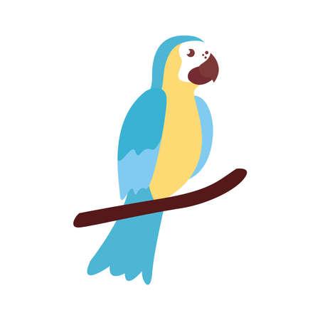 guacamaya exotic bird flat style icon vector illustration design