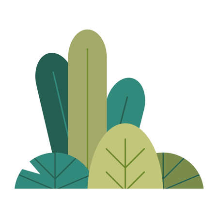 bush plant nature garden scene vector illustration design