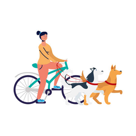 Woman riding bike with dogs design, Vehicle bicycle cycle lifestyle sport and transportation theme Vector illustration