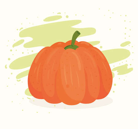 fresh pumpkin, healthy food concept vector illustration design