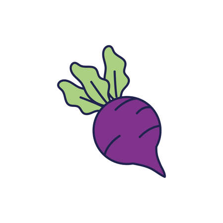 fresh eggplant vegetable healthy food icon vector illustration design 向量圖像