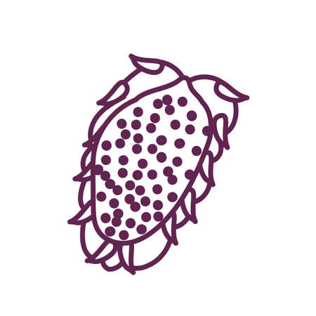 fresh wild fruit isolated icon vector illustration design Vettoriali