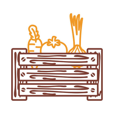 tomatoes carrots and onions inside box line style icon design, Vegetable organic food healthy fresh natural and market theme Vector illustration 向量圖像