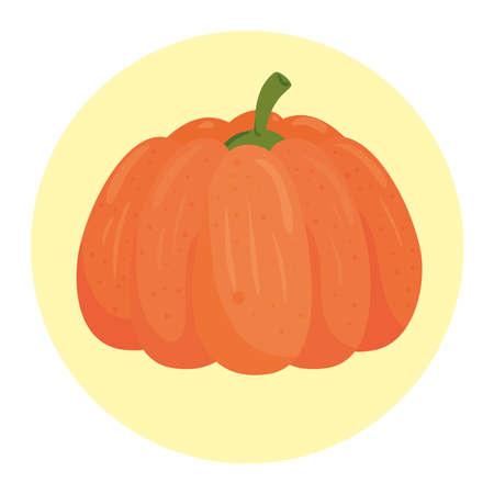 fresh pumpkin in round frame, on white background vector illustration design
