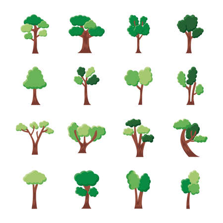 bundle of sixteen trees set collection icons vector illustration design