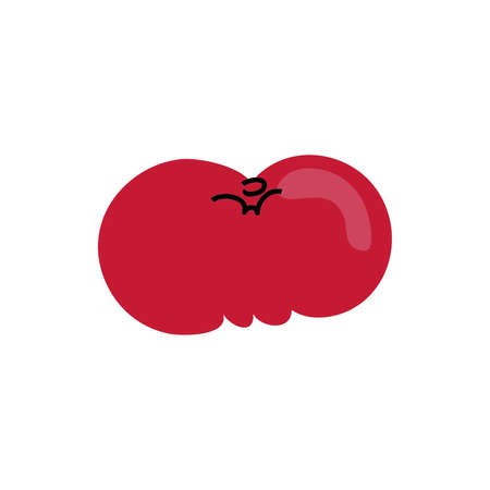 fresh tomato vegetable healthy isolated iconvector illustration design