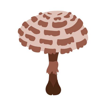 fungus plant galerina marginata hand draw style vector illustration design