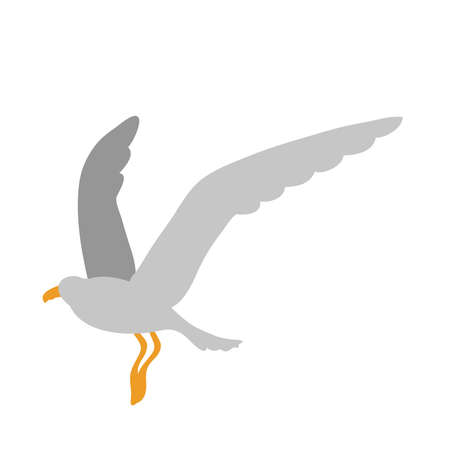 seagull bird flat style icon vector illustration design