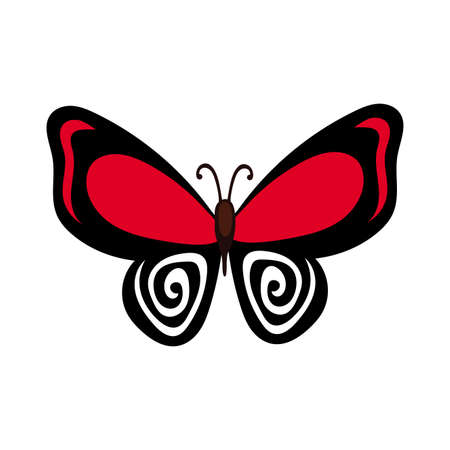 beautiful butterfly insect red flat style icon vector illustration design Illusztráció