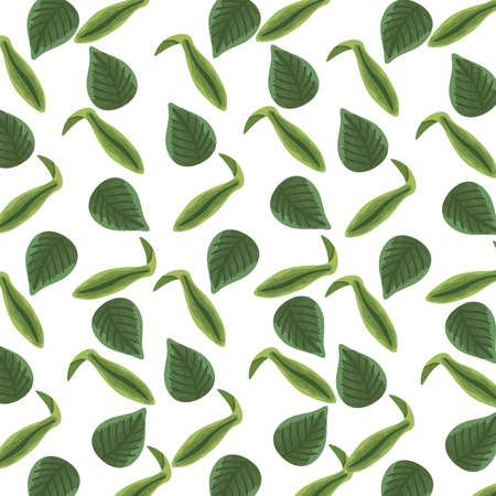 leaves plants nature pattern background detailed style vector illustration design