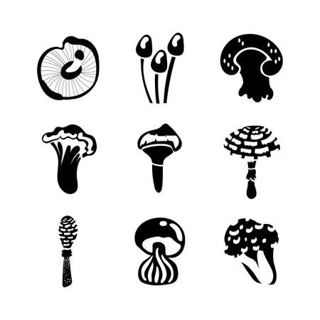 bundle of fungus set icons vector illustration design