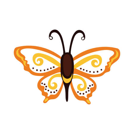 beautiful butterfly orange insect flat style icon vector illustration design