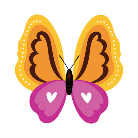 beautiful butterfly yellow insect flat style icon vector illustration design