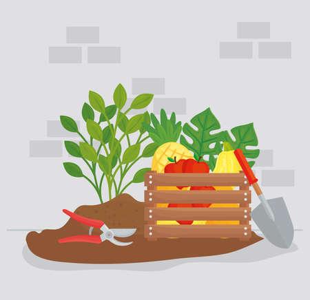 Gardening vegetables fruits plants pliers and shovel design, garden planting and nature theme Vector illustration