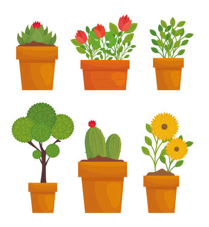 Gardening plants and flowers with leaves in pots design, garden planting and nature theme Vector illustration
