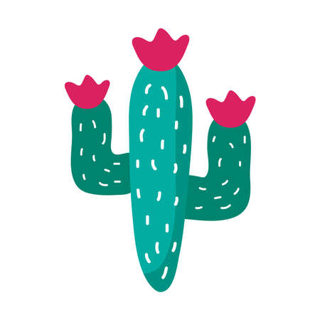 cactus mexican plant flat style icon vector illustration design