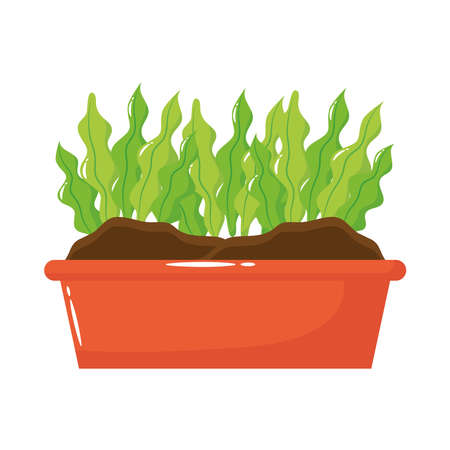houseplant in square pot flat style icon vector illustration design