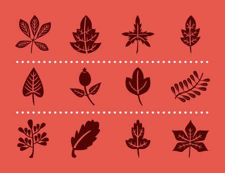 bundle of twelve autumn leaves silhouette style icons vector illustration design