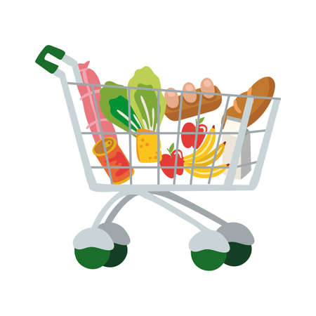 groceries in shopping cart free form style vector illustration design