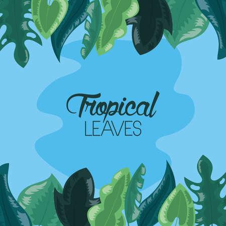 tropical leaves foliage spot blue background vector illustration 向量圖像