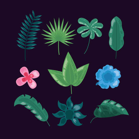 flowers foliage tropical leaves dark background vector illustration 向量圖像