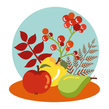 fruits of autumn with leaves decoration vector illustration design Illustration