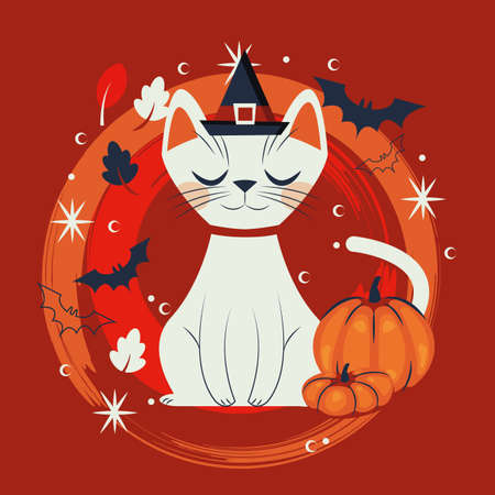 halloween cat disguised of witch character vector illustration design