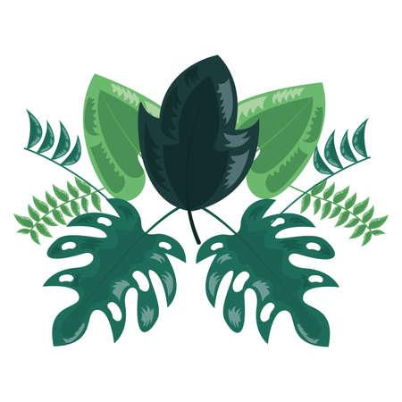 botanical leaf foliage arrangement on white background vector illustration Illusztráció